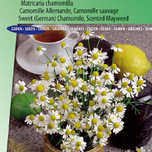 Camomille Sweet GermanScented Mayweed (Matricaria chamomilla)