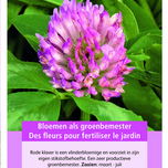 Green Manure Crop Red Clover / 150 gr - 60 m2