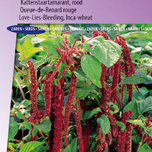 Love-Lies-Bleeding Red (Inca Wheat) - Amaranthus