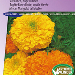 Marigold, African tall double Crackerjack Mix - Tagete