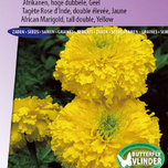 Marigold, African tall double Smiles (Yellow) - Tagetes