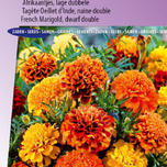 Marigold, French dwarf double Bonita Mix - Tagetes