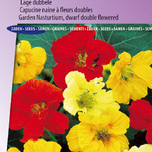 Nasturtium, Indian Cress dwarf double Jewel mix