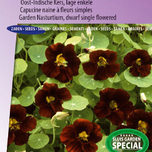 Nasturtium, Indian Cress dwarf single King Theodore (Black Velvet)