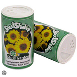 Container Sunflower Giant flowered yellow