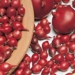 Onion sets Red Baron (250gr)