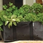Herb Planting Bag - Burgon and Ball