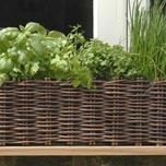 Natural Willow Window Box Planter - Burgon and Ball