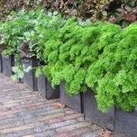 planting-bag-balcony-wall-100%-recycled