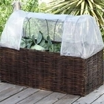 NEW Pest Control Cover – Veg & Tom Planter - Burgon and Ball