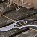 SC Secateurs - Burgon and Ball
