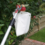 Traditional telescopic fruit harvest device