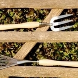 RHS Stainless Mid Handled Fork - Burgon and Ball