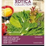 xotica-salade-mix-exotic-baby-leaf