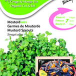 Bio Cut & Eat Musterd cress