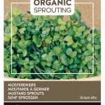 Organic Sprouting Musterd cress - Buzzy