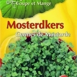 Cut & Eat Musterd cress