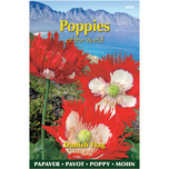 Poppies of the world – Papaver PaeoniflorumDanish Flag