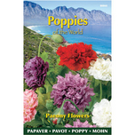 Poppies of The world Paeoniflorum – Double Mixed