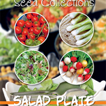 seeds-collection-salad-plate