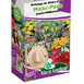 Meadow Flower Seed Mix Summer - Maxi Pack Sluis Garden