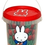 Miffy and the Red Tulips