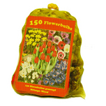 Mixed flowerbulbs (big bag)