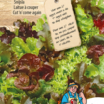 Lettuce Babyleaf Mixed