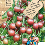 tomato seeds Chocolate Cherry