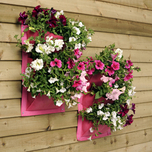 Pink Plant wall bags, set of 2