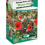 Container Flower meadow mixture WILD