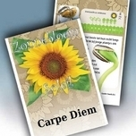 Sunflower Personalized Printed Seed Packets - 100 pieces