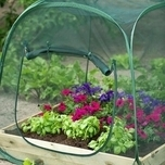 Pop-Up Greenhouse - Nature