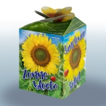 Sunflower Greengift
