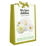 We Love Dahlias - White Love